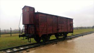 vaunu, jolla ihmisiä kuljetettiin Birkenauhun